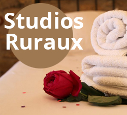 Estudio rural castellon