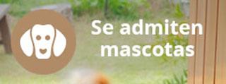 casa-rural-castellon-mascotas