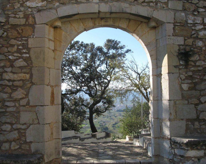 Ruta de los olivos milenarios en sant mateu